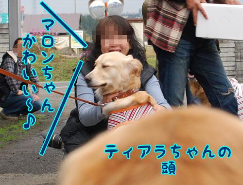 ティーちゃんのジェラシー.jpg