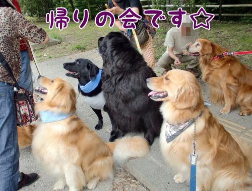 帰りの会.jpg