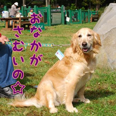 あゆちゃん.jpg